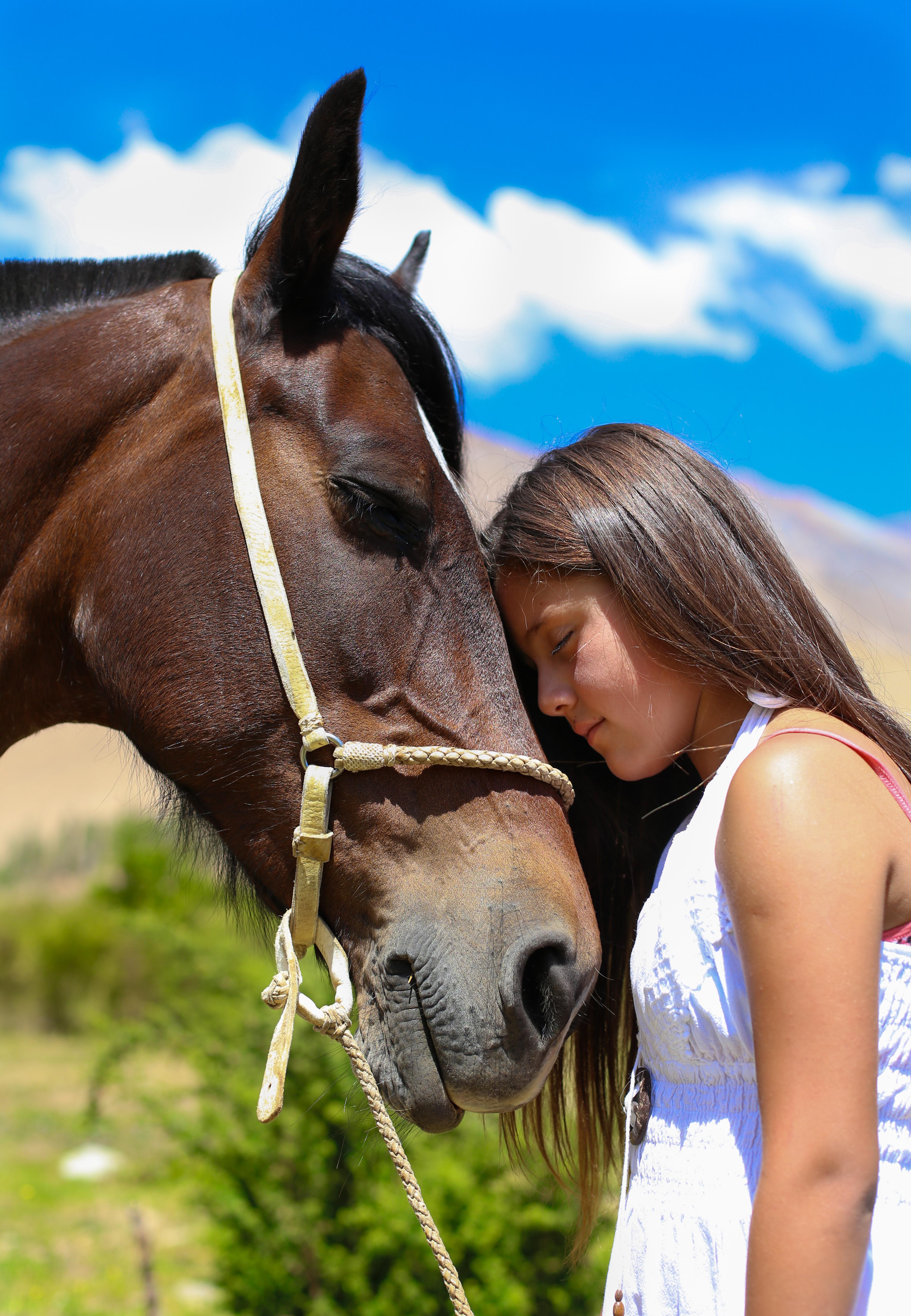 equinoterapia-caballos-que-curan1461256538