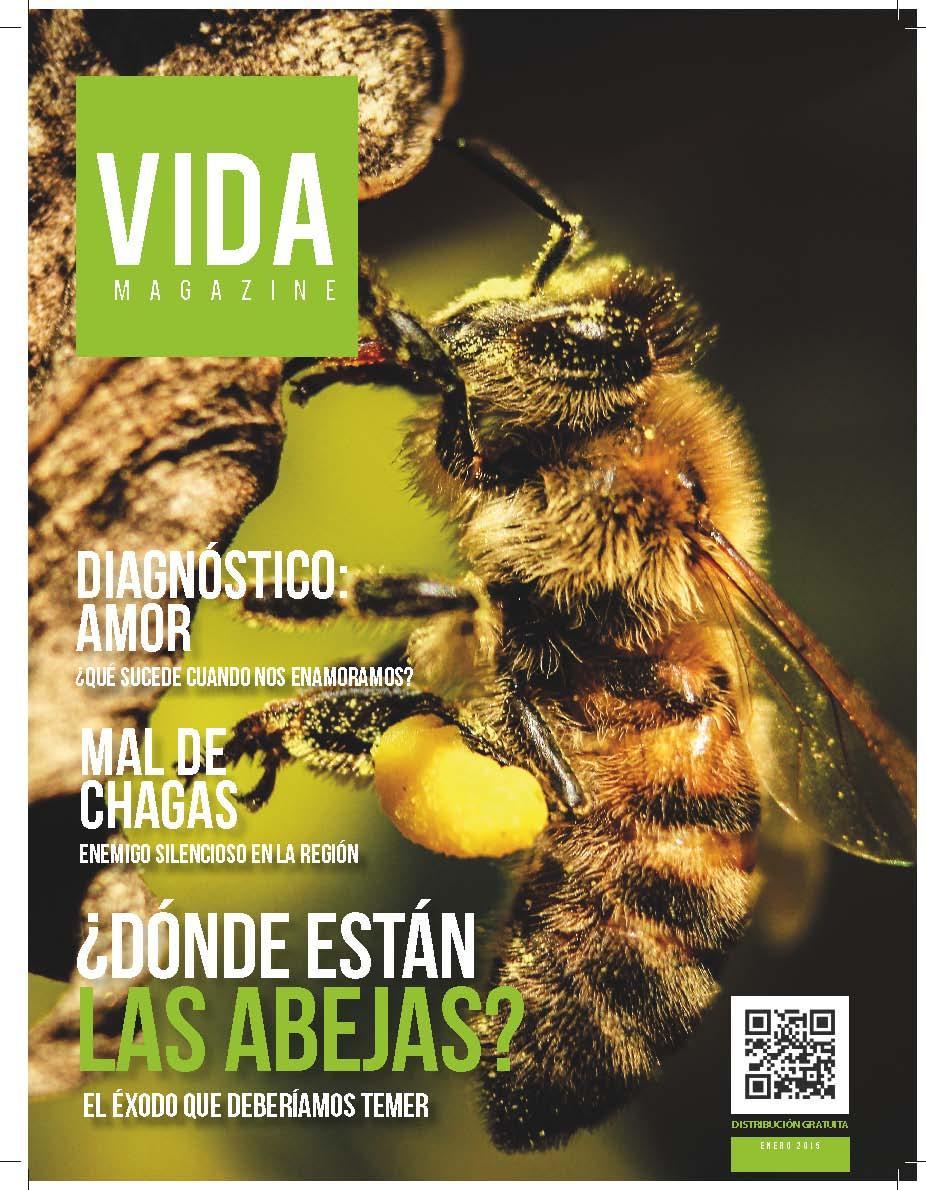 vida-magazine-edicion-n5